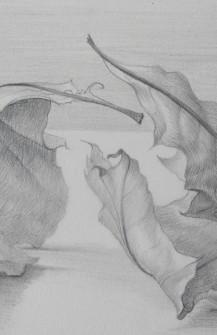 Drawing # 1