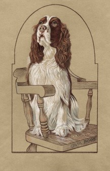 Spaniel on Chair